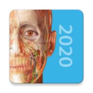 2020人體解剖學圖譜游戲