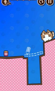 果冻猫宠物用品