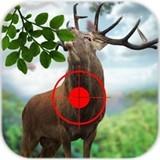 野生鹿狩獵安卓版