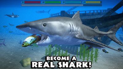鲨鱼模拟器破解版