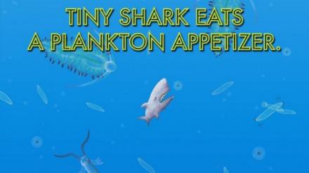 美味海洋2游戏下载