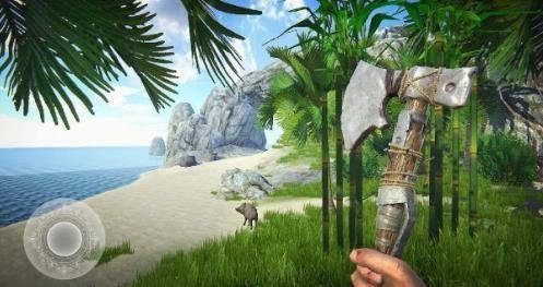 最后的海盗岛屿生存中文内购破解版