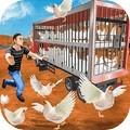 公鸡养殖场手游
