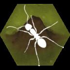 蚂蚁生存模拟无限金币破解版