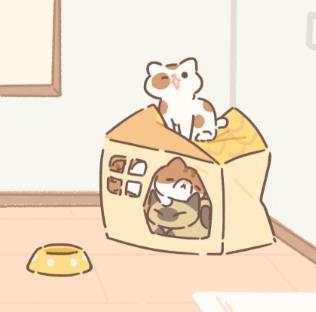 遇见你的猫攻略 喵圈新手攻略玩法技巧[多图]图片2