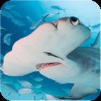锤头鲨模拟器破解版