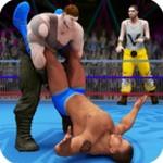 世界拳击队摔角比赛中文版